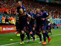 נבחרת הולנד חוגגת ניצחון על ספרד, מונדיאל 2014 / צלם: רויטרס