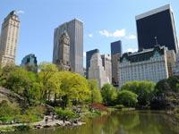 ניו יורק - סנטרל פארק-מנהטן / קרדיט: שאטרסטוק