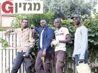 נידאיה לאמין, וואלי טין, סטניסלס פיי וגאלו מוחמד אובאבה / צילום: שלומי יוסף