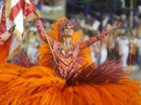 הקרנבל בברזיל / צילום: רויטרס