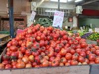עגבניות / צילום: תמר מצפי