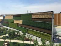 קיר ירוק במילאנו/ צילום: גיא ברנס