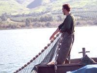 דיג בכנרת / צילום: שלומי יוסף