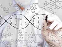 אותיות בשפת הגנטיקה / צילום: Shuterstock
