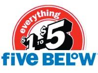 הקמעונאית Five Below / צילום: אתר החברה