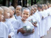 נזירים ילדים בודהיסטים בתאילנד לובשים כותנה / צילום: רויטרס