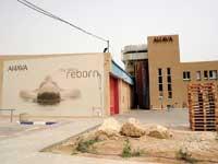 מפעל אהבה בקיבוץ מצפה שלם /צילום: איל יצהר