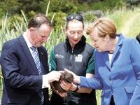 אנגלה מרקל,  ראש ממשלת ניו-זילנד - ג'ון קיי והקיווי / צילום: רויטרס