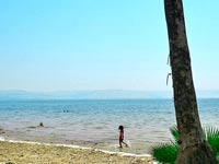 החוף הירוק – חוקוק צפון בכנרת | צילום: אורי נבו