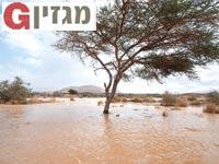 מכתש רמון / צילום: יותם יעקבסון