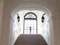 מדרגות / צילום: מירב מורן