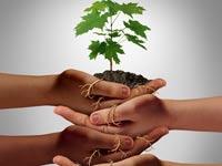 מיזמים חברתיים וסביבתיים/ צילום:  Shutterstock/ א.ס.א.פ קרייטיב