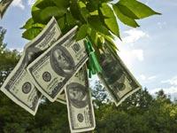 מימון לעסקים / צילום: שאטרסטוק