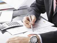 דוחות כספיים/צילום:  Shutterstock/ א.ס.א.פ קרייטיב