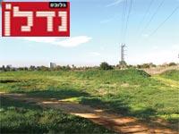 הקרקע בגני יהודה / צילום: איל יצהר