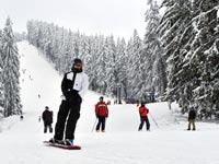 סקי בבנסקו / צילום:  Shutterstock/ א.ס.א.פ קרייטיב