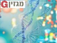 גנטיקה / צילום:  Shutterstock/ א.ס.א.פ קרייטיב