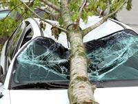 מי אחראי לפצות אותנו על פציעה או נזק בשל מזג-האוויר?