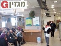 תורים במשרד הפנים בתל אביב / צילום: דרור פויר