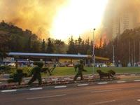 שריפה בחיפה / צילום : משה טובי