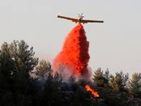 מטוס כיבוי בפעולה / צילום: רויטרס