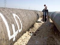 צינור גז במצרים. הממשלה יוצאת מגדרה כדי להביא למדינה יזמים זרים / צילום: רויטרס
