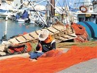 דייג ורשת / צילום: תמר מצפי