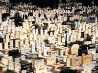 בית הקברות בקריית שאול. בבתי קברות סגורים המחירים מאמירים / צילום: איל יצהר