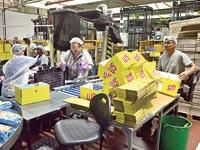 מפעל על בד / צילום: איל יצהר