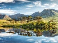 אירלנד/ צילום:  Shutterstock/ א.ס.א.פ קרייטיב/ צילום:  Shutterstock/ א.ס.א.פ קרייטיב