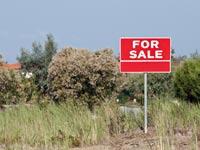 קרקע להשקעה / צילום: Shutterstock א.ס.א.פ קרייטיב