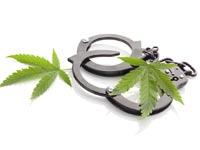 מאסר בגין סמים קלים / צילום:  Shutterstock/ א.ס.א.פ קרייטיב