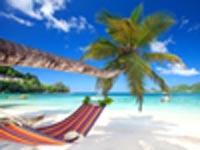 חוף סיישל/ צילום:  Shutterstock/ א.ס.א.פ קרייטיב