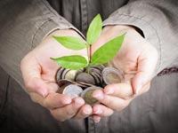 צמיחה / צילום: Shutterstock/ א.ס.א.פ קרייטיב