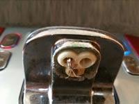 תמי 4, חרקים במכשיר / צילום: ביתי