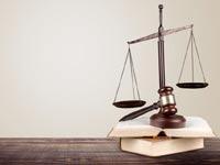 לימודי משפטים לתואר שני  / צילום:  Shutterstock/ א.ס.א.פ קרייטיב