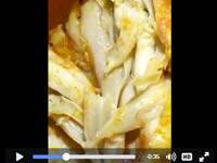 תולעים חיות בעוף ברשת חצי חינם / צילום: וידאו
