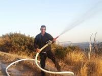 שריפה, חיפה / צילום: מירב שרוט