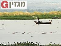 הנילוס /צילום: Shutterstock/ א.ס.א.פ קרייטיב