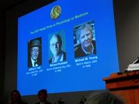 זוכי פרס נובל לרפואה / צילום : רויטרס