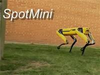 רובוט ספוט מיני. צילום מסך מתוך סרטון הוידאו