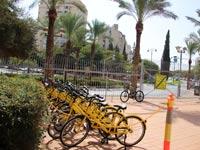 אופניים / צילום: דוברות בר אילן