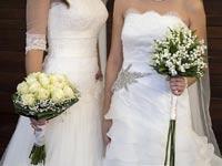 ברית הזוגיות וגירושין אצל חד מיניים/ / צילום:  Shutterstock/ א.ס.א.פ קרייטיב