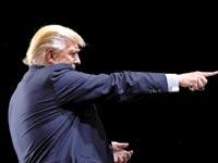 דונאלד טראמפ / צילום: רויטרס