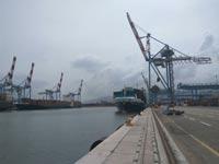 נמל חיפה - המנופים עם הזרועות מעלה / צילום: עושים עניין