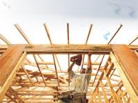 בניה בעץ    / צילום:רויטרס, מיקסיקאס