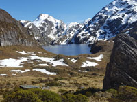 ניו זילנד/ צילום: עידן קרסנטי