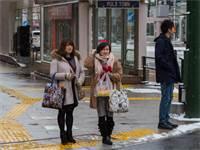 יפן / צילום: שאטרסטוק