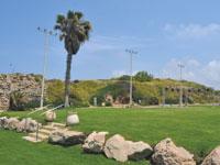 גן ארועים בקיבוץ שדות ים/ צילום: גיל ארבל