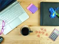 שוק העבודה מתחדש / תמונה: שאטרסטוק
